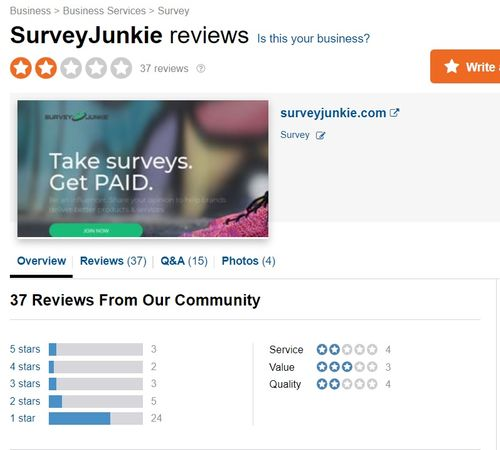 survey junkie negative reviews