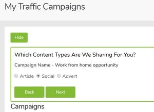 traffic ivy campaign