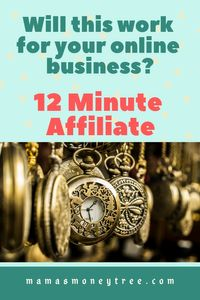 12 Minute Affiliate Review – Truth Exposed
