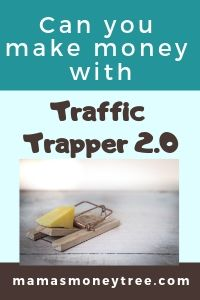 A Traffic Trapper Review – what they never reveal