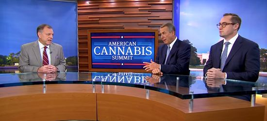 american cannabis summit video capture