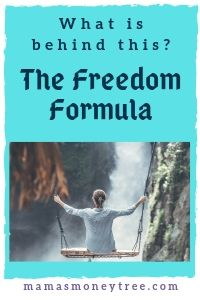 The Freedom Formula Review
