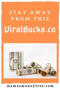 Viral Bucks Review