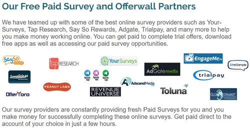 rewardingways survey providers