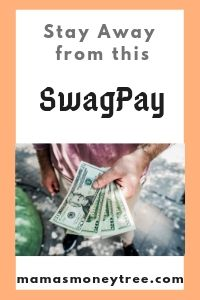 SwagPay-Review