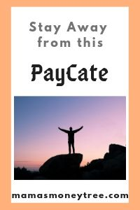 PayCate-Review