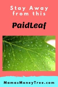 PaidLeaf-Review