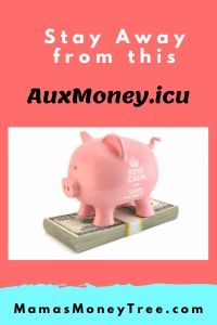 AuxMoney-Review