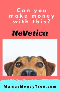 NeVetica-Review