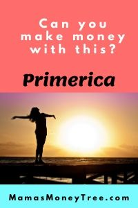 Primerica-Review