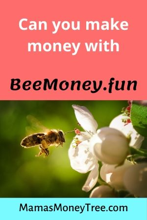 BeeMoney-Review